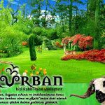 bayram_resimleri-kartlari11