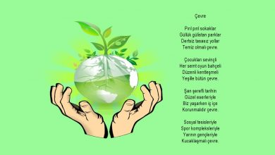 Çevre temizliği ile ilgili şiirler
