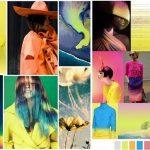2016 Moda Renkleri