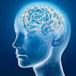 Zihin Yorgunluğu Nedir