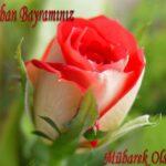 kurban-bayrami-kartlari