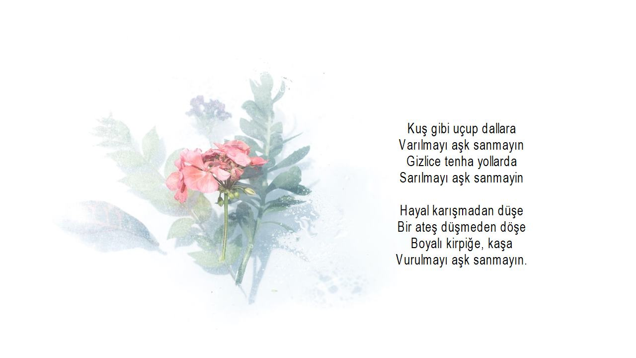 Aşkıma şiirler
