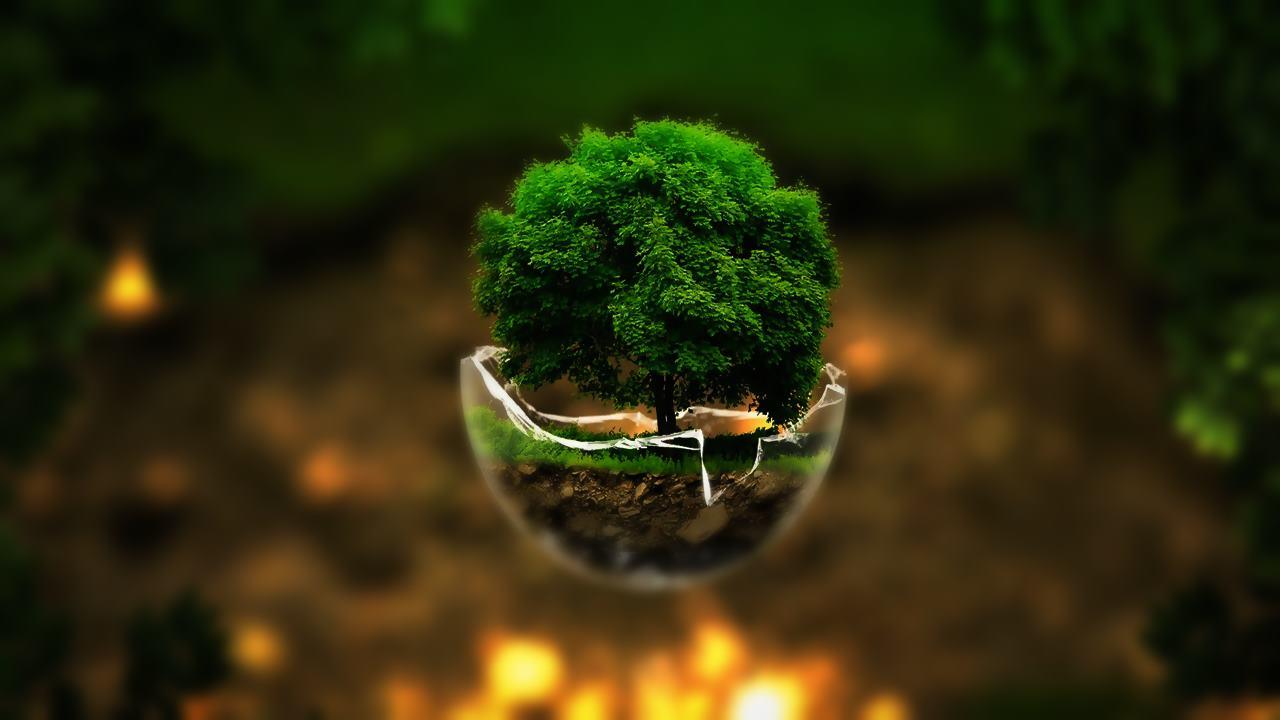 Doğa şiirleri