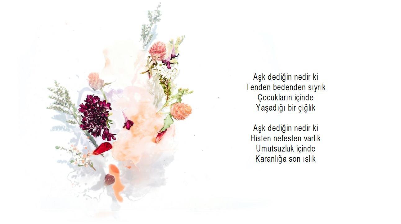 Romantik şiirler