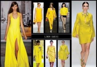 2014 Yazının moda renkleri