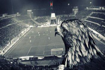 Beşiktaş marşları sözleri