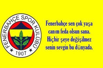 Fenerbahçe Sözleri Resimli