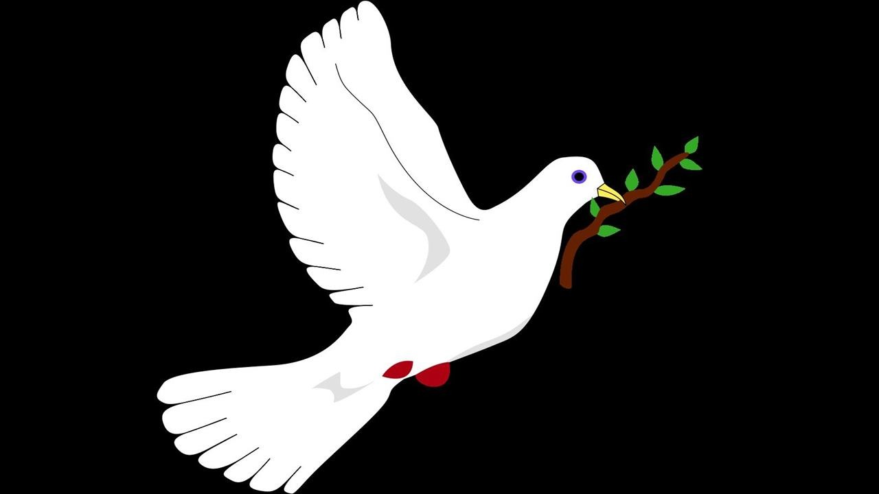 Barış Şiirleri